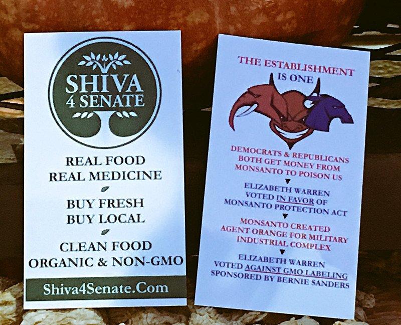 Shiva 4 Senate The Establishment is One